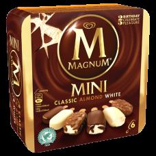 Magnum  Mini  - Mix